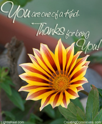 thankfulness flower